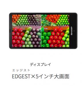 SH-M02 display